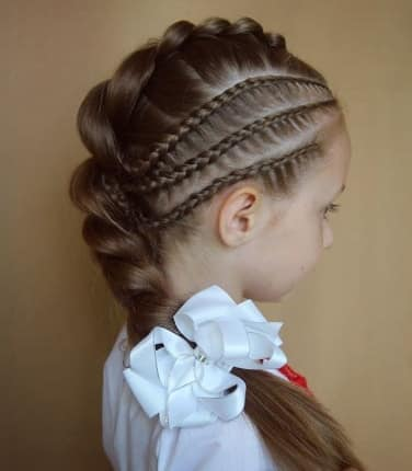 Fine Braids On The Sides With Thick Braided Ponytail