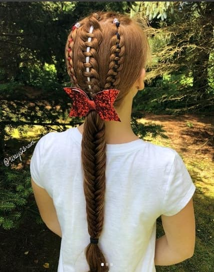Back Braids With Long Ponytail