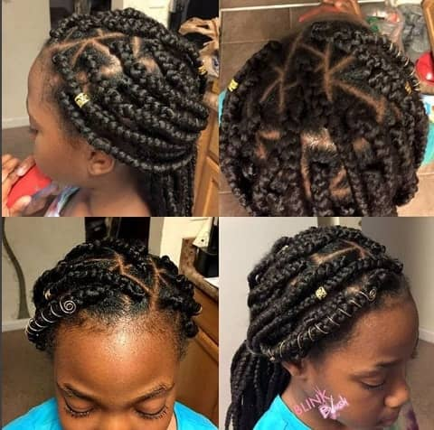 Box Braided Design With Crown And Ponytail
