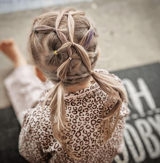 Sectioned Braided Hairstyle