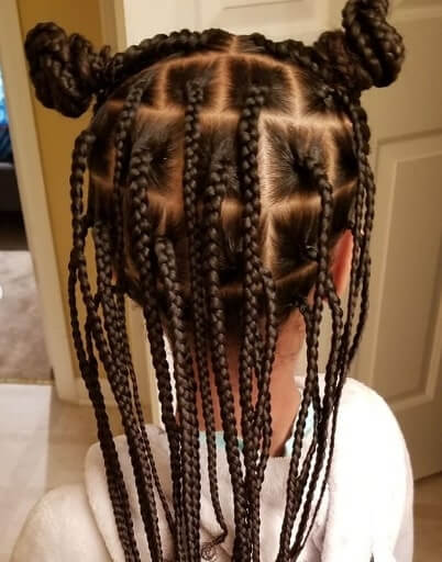 Center Parted Braided Hairstyle With Pigtails