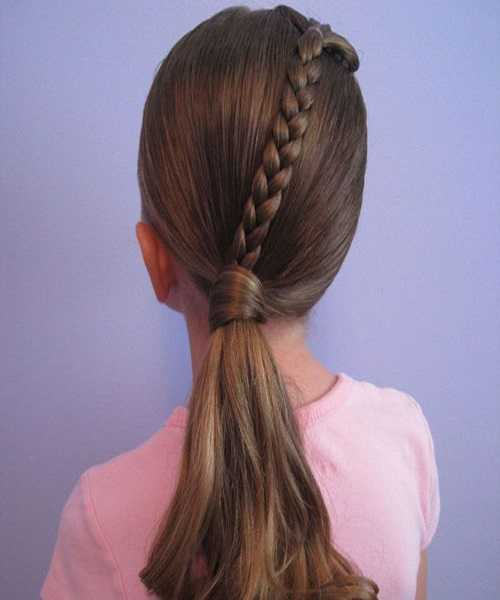 Combed Back Braided Hairstyle With Low Ponytail