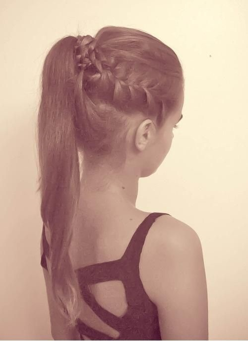 High Tail With Side Braid And Combed Back Top