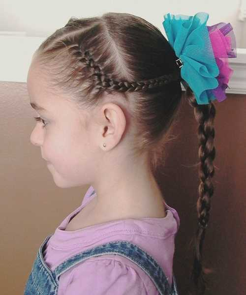 Sectioned Hairstyle With French Braided Ponytail