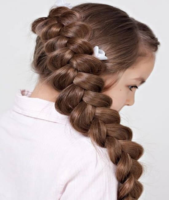 Dutch Side Braided Hairstyle